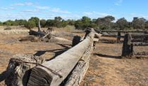 Zanci Pastoral loop, Mungo National Park. Photo: Wendy Hills/NSW Government