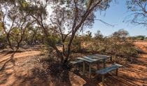 Rustic picnic table set beneath trees, surrounded by a patchwork of scrubland. Image credit: John Spencer © DPIE