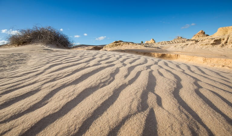 Dramatic formations of sand and silt along the Walls of China cycling trail, Mungo National Park. Photo: Vision House Photography/OEH