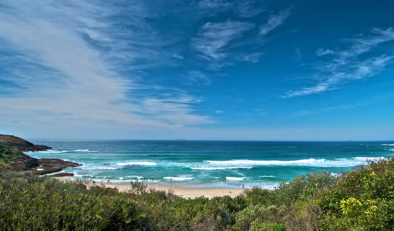 Frazer campground view, Munmorah State Conservation Area. Photo: John Spencer