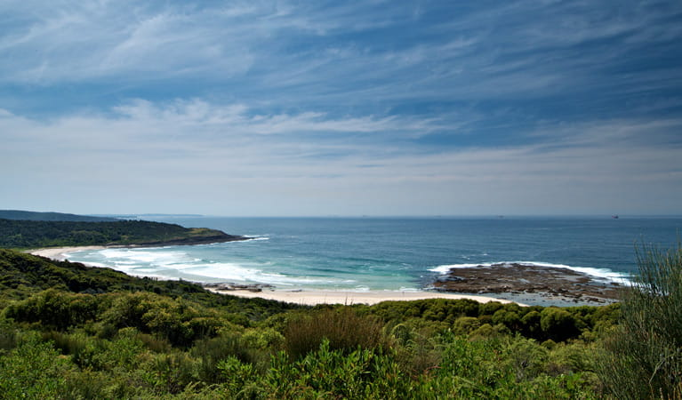 Moonee Beach walking track ocean views. Photo: John Spencer