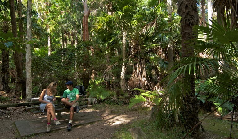 Palms picnic area benches, Munmorah State Conservation Area. Photo: John Spencer