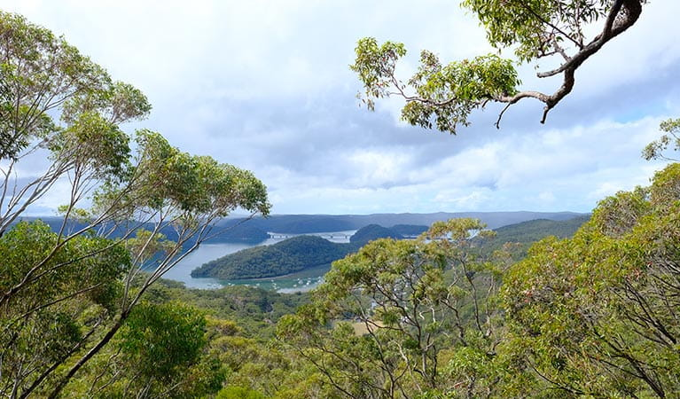 View of Brooklyn and the Hawkesbury River from JD Tipper lookout. Photo: Elinor Sheargold/OEH