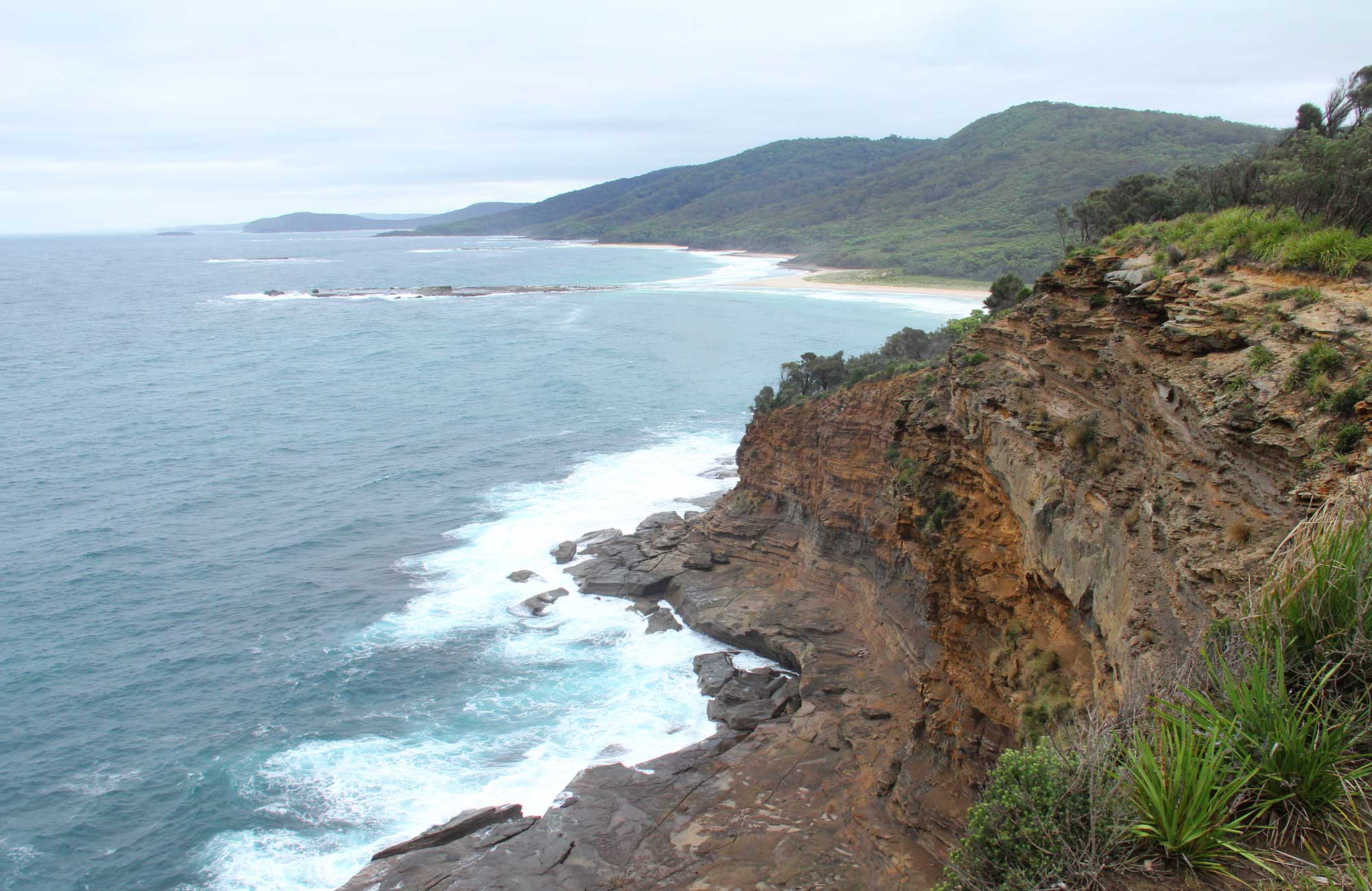 Pretty Beach to Snapper Point Walking Track, Murramarang National Park. Photo: John Yurasek/NSW Government
