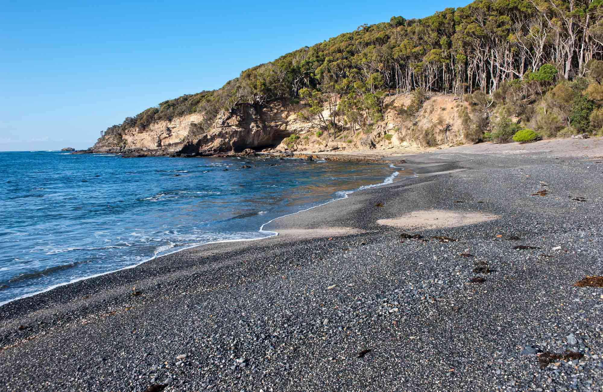 Darks Beach walking track, Murramarang National Park. Photo: Michael van Ewijk