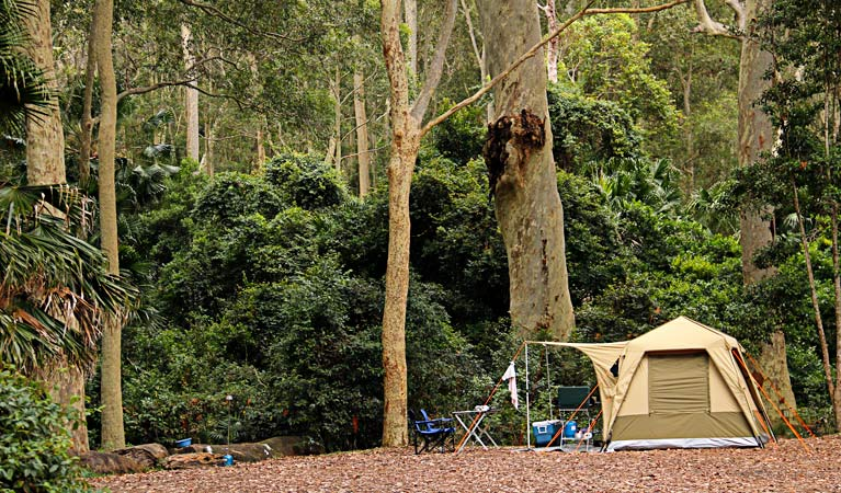 Depot Beach campground, Murramarang National Park. Photo: John Yurasek/NSW Government