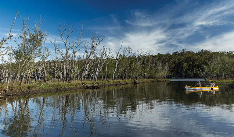 Canoeing on Durras Lake, Murramarang National Park. Photo: D Finnegan/OEH