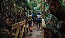 A couple walk along Durras Lake discovery trail in Murramarang National Park. Photo: Melissa Findley/OEH.