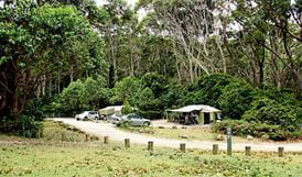 Pebbly Beach campground, Murramarang National Park. Photo: John Yurasek