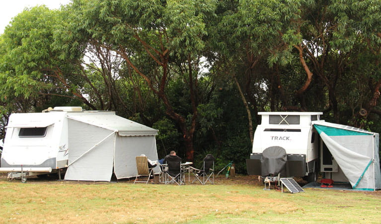 Caravans at Pretty Beach campground, Murramarang National Park. Photo: John Yurasek