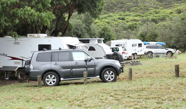 4WD and caravans in Pretty Beach campground, Murramarang National Park. Photo: John Yurasek