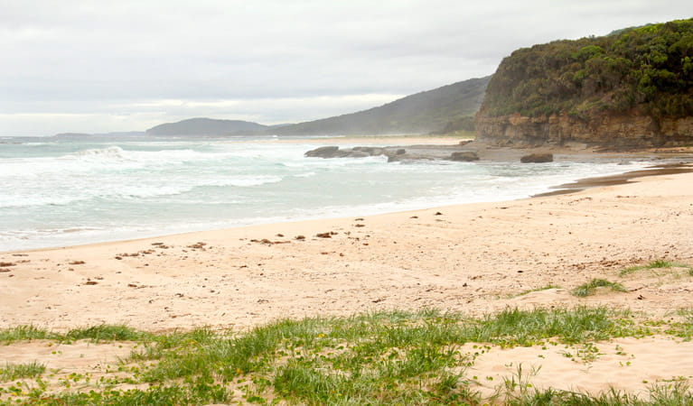 Pretty Beach to Durras Mountain Walking Track, Murramarang National Park. Photo: John Yurasek