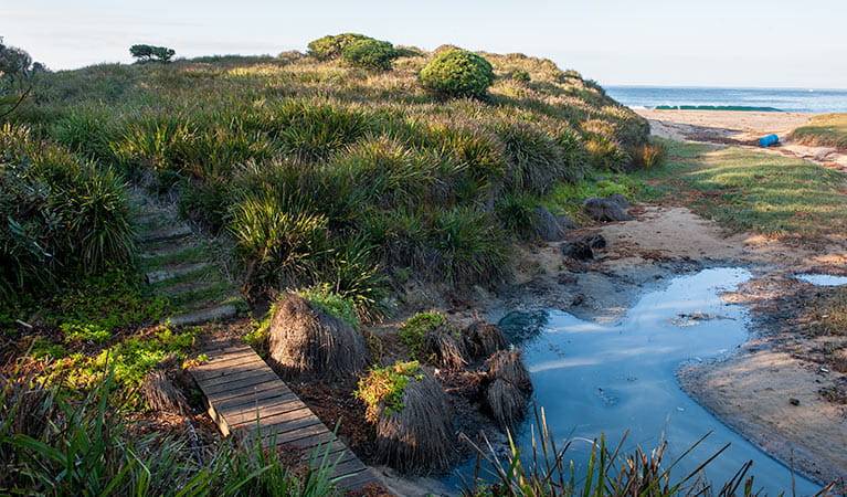 Richmond Beach, Murramarang National Park. Photo: Michael Van Ewijk