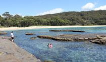 Family snorkelling near a rock platform at Depot Beach, located in Murramarang National Park. Photo: John Yurasek/DPIE