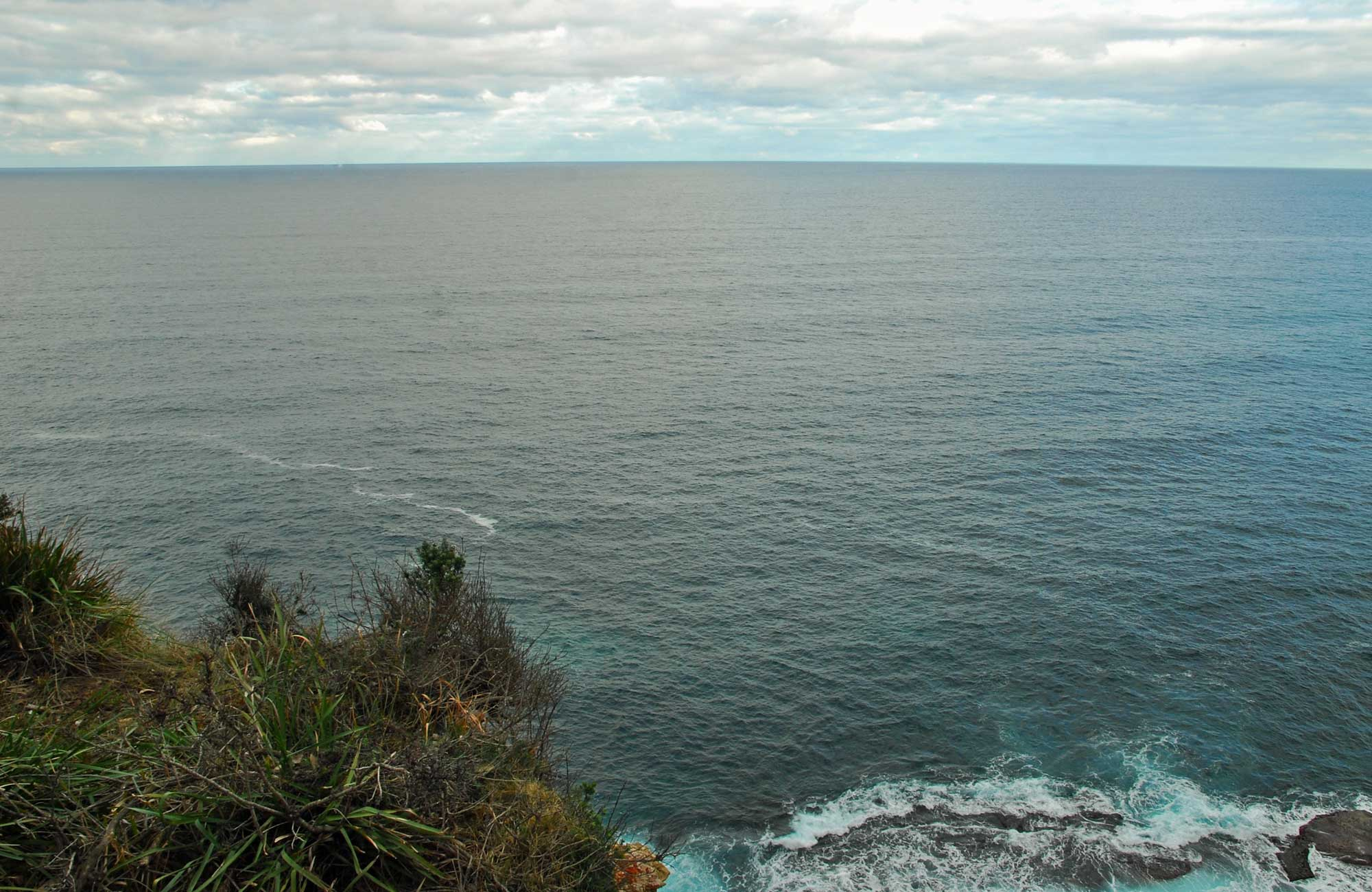 Snapper Point lookout, Murramarang National Park. Photo: M Jarmon