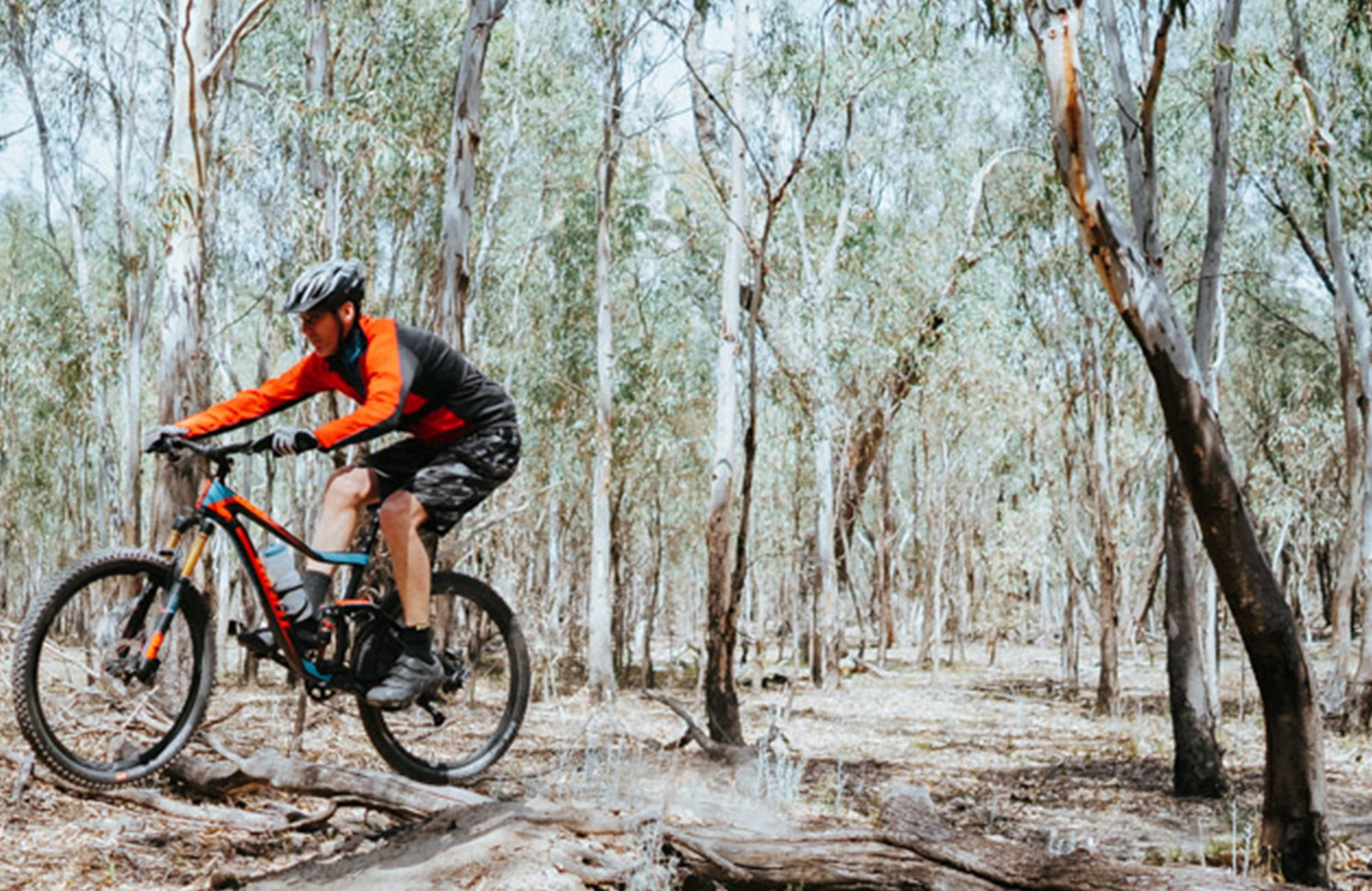 A bike rider cycles over a branch along Deniliquin mountain bike trails, Murray Valley Regional Park. Photo: Ain Raddik/Edward River Council.