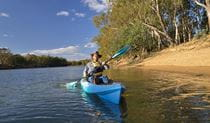 Man kayaking near Benarca campground in Murray Valley Regional Park. Photo: Gavin Hansford/NSW Government