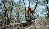 A bike rider descends steep dirt singletrack along Deniliquin mountain bike trails, Murray Valley Regional Park. Photo: Ain Raadik/Edward River Council.