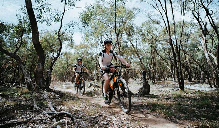 Two bike riders cycle along the dirt singletrack of Deniliquin mountain bike trails, Murray Valley Regional Park. Photo: Ain Raadik/Edward River Council