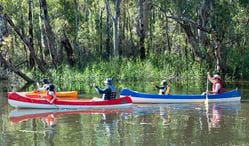 Edward River canoe and kayak trail, Murray Valley National Park. Photo: David Finnegan