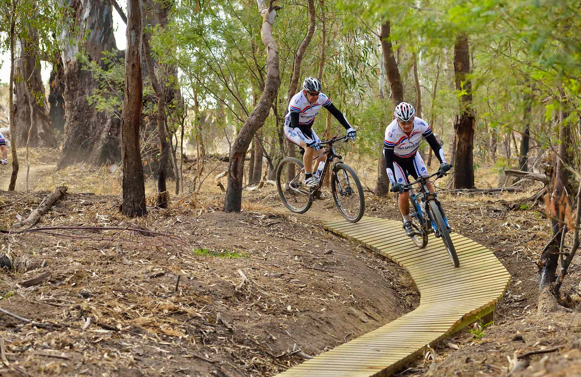 Five Mile Mountain Bike Trail Nsw National Parks