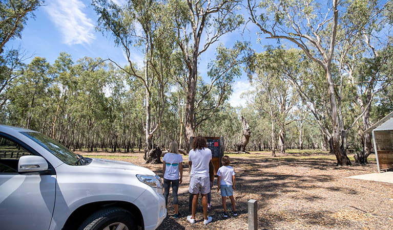 A family reads an information panel at Barmah Lakes day visitor area, Barmah National Park. Photo: B Ferguson/OEH