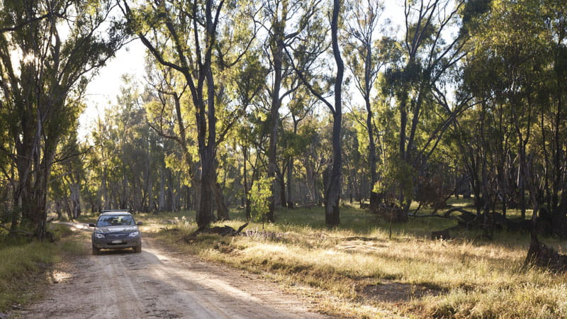 Car touring, Murray Valley National Park. Photo: David Finnegan © DPIE