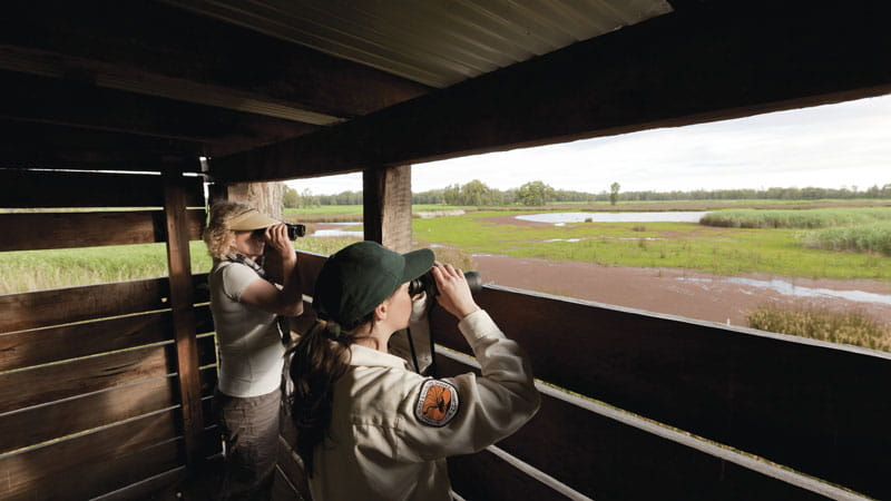 Birdwatching from Reedbeds bird hide. Photo: David Finnegan