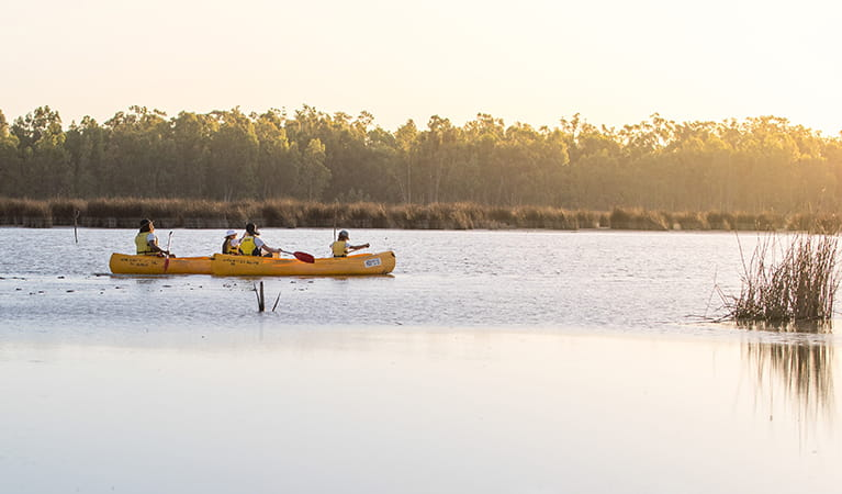 People canoeing at sunset on the Murray River. Photo: B Ferguson/OEH