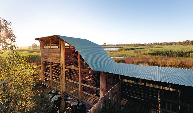 Reed Beds Bird Hide, Murray Valley National Park. Photo: David Finnegan OEH