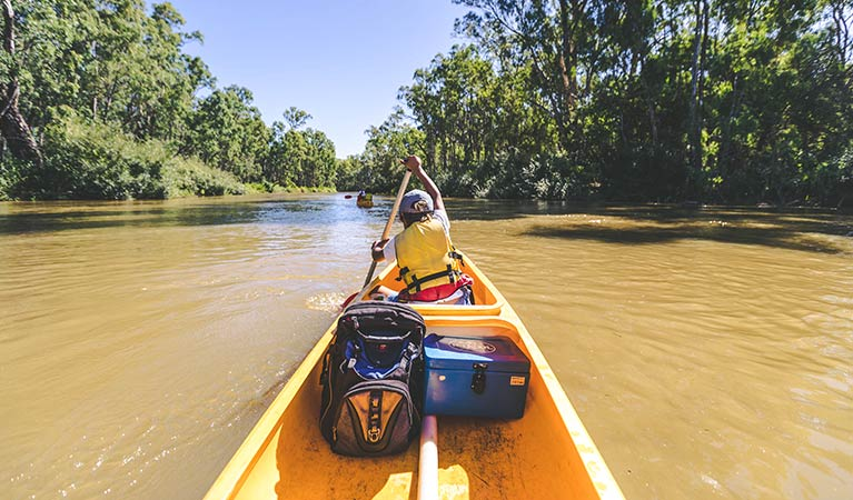 A kayaker paddles along the Murray River, Murray Valley National Park. Photo: B Ferguson/OEH