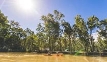 Kayakers float past Swifts Creek campground, Murray Valley National Park. Photo: B Ferguson/OEH