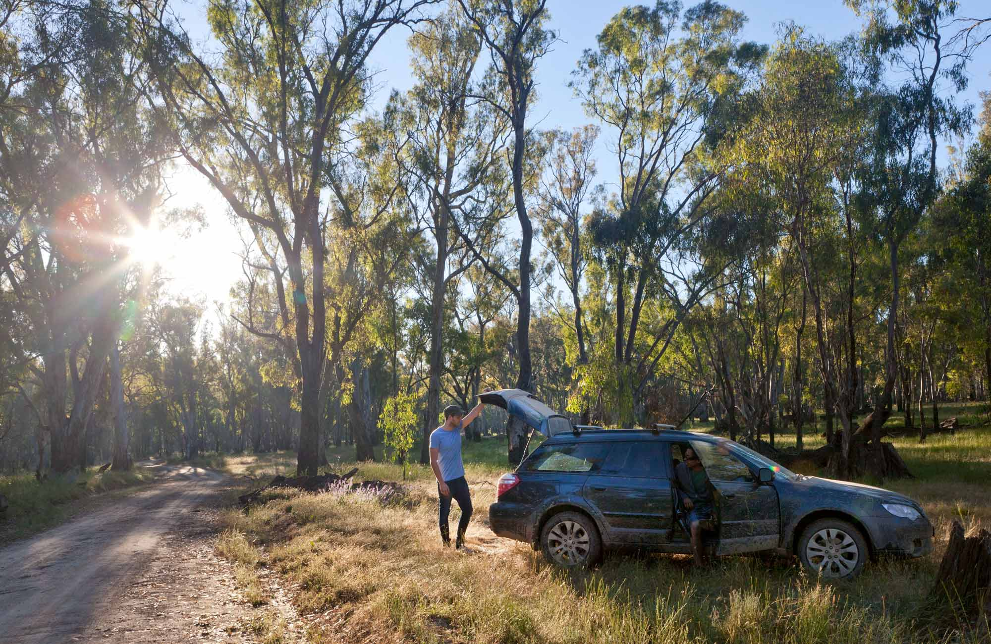 Car touring, Murrumbidgee Valley National Park. Photo: David Finnegan/NSW Government