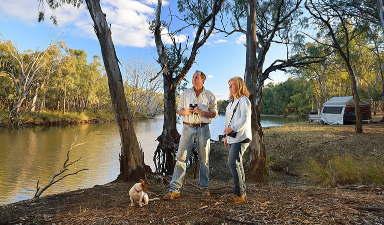 A couple and their dog next to the Murrumbidgee River with a tent in the background at Wooloondool campground, Murrumbidgee Valley National Park. Photo: Gavin Hansford © DPIE