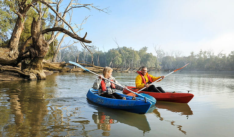 2 people in kayaks at Wooloondool campground, Murrumbidgee Valley National Park. Photo: Gavin Hansford/NSW Government