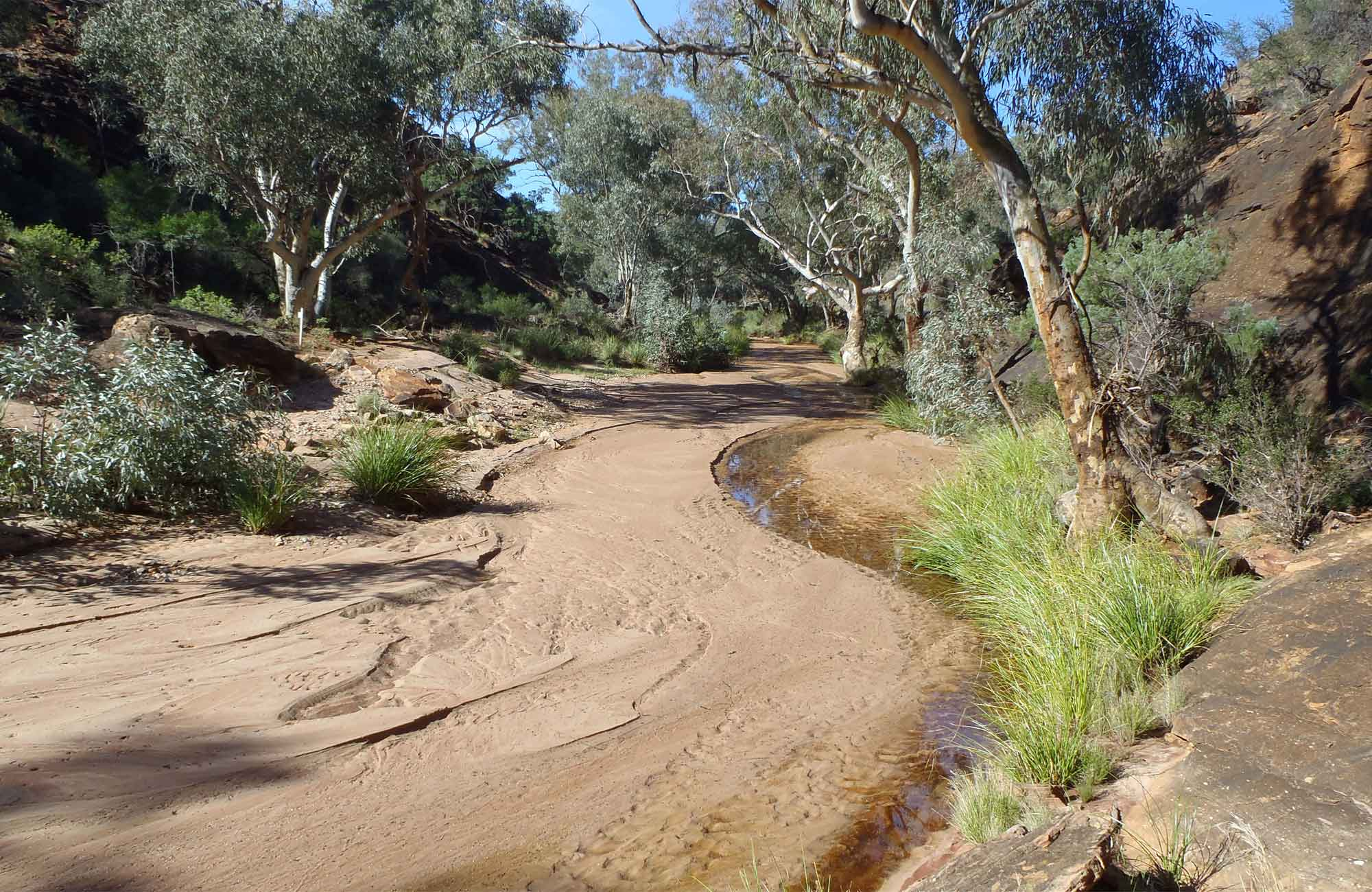 Homestead creek. Photo:Dinitee Harkard Copyright:NSW Government