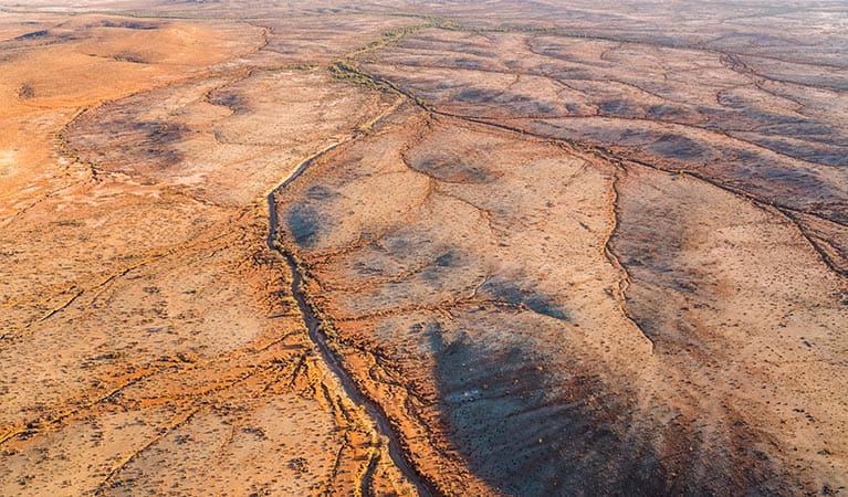 Aerial view of the arid landscape of Mutawintji National Park. John Spencer/DPIE