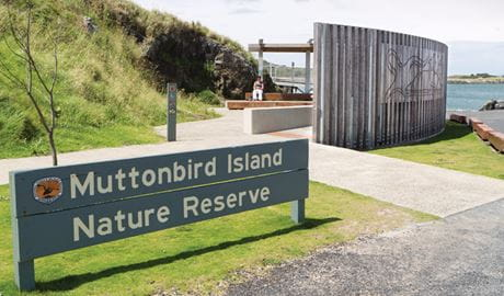 Outdoor learning space, Muttonbird Island Nature Reserve. Photo: Rob Cleary
