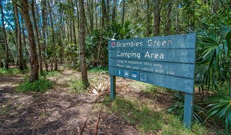 Brambles Green Campground, Myall Lakes National Park. Photo: John Spencer/DPIE