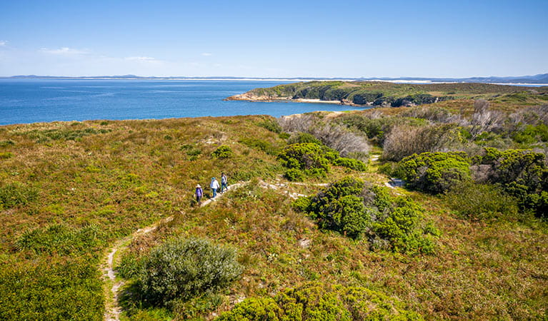 Bushwalkers on a track through heathland, with the ocean and NSW mainland in the background. Photo: John Spencer © DPIE