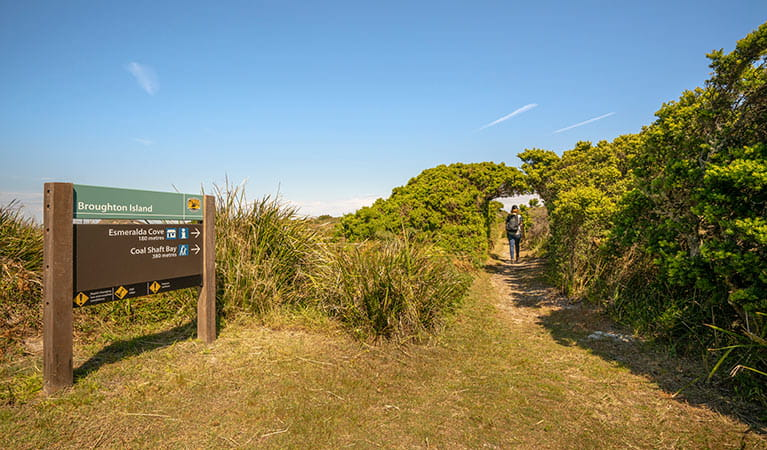 A bushwalker on a track through coastal heathland, with park signage for Broughton Island attractions in the foreground. Photo: John Spencer © DPIE