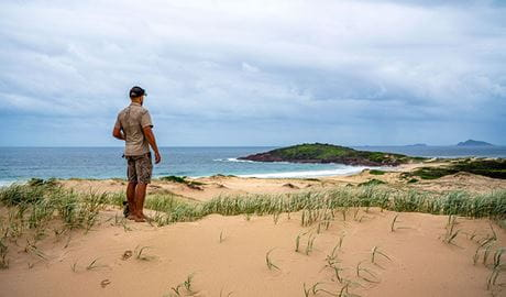 A man stands on the dunes looking out toward the headland on Dark Point walking track in Myall Lakes National Park. Photo: John Spencer © DPIE