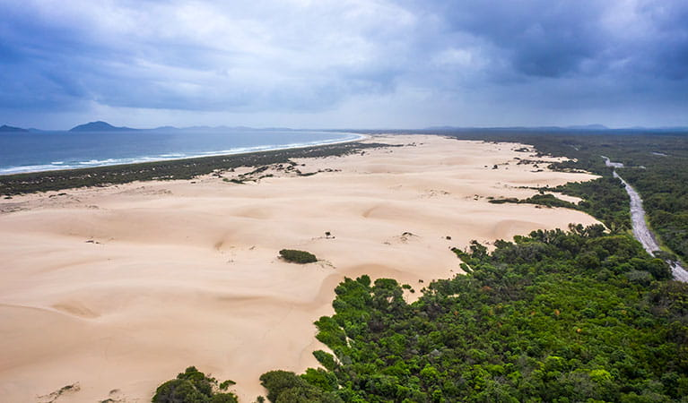 The beach and dunes along Dark Point walking track in Myall Lakes National Park. Photo: John Spencer © DPIE