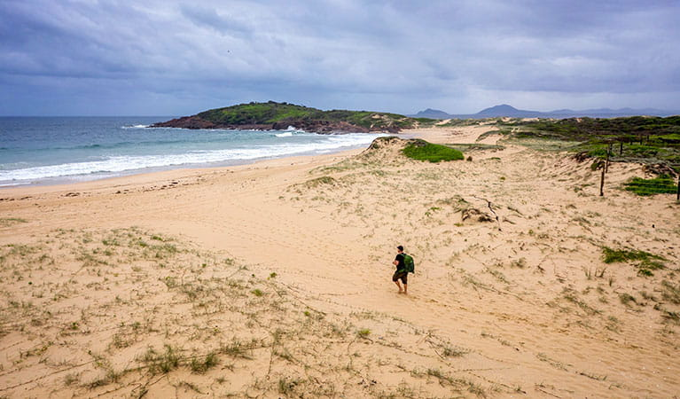 A man walks towards the beach along Dark Point walking track in Myall Lakes National Park. Photo: John Spencer © DPIE