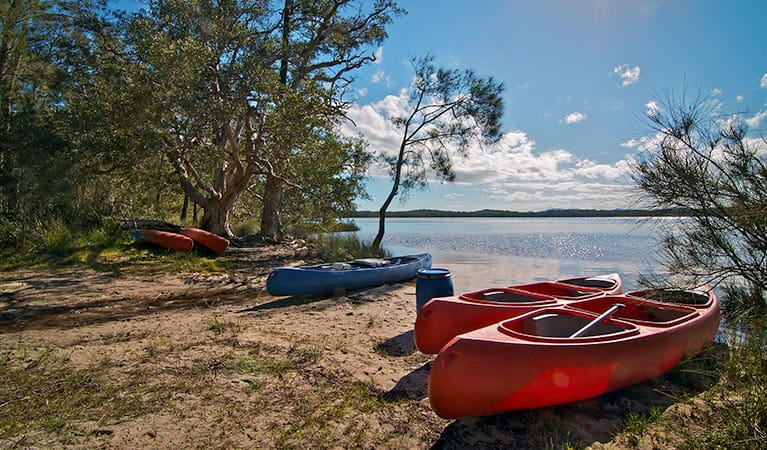 Johnsons Beach campground, Myall Lakes National Park. Photo: John Spencer/NSW Government