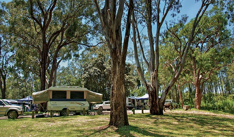 Korsmans Landing campground, Myall Lakes National Park. Photo: John Spencer/NSW Government