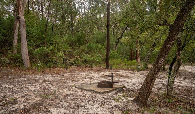 View of sandy camping area with wood barbecue set in bushland. Photo: John Spencer © DPIE