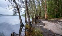 Joes Cove campground and Two Mile Lake in Myall Lakes National Park. Photo: John Spencer © DPIE