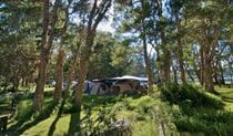 Neranie campground tents, Myall Lakes National Park. Photo:John Spencer