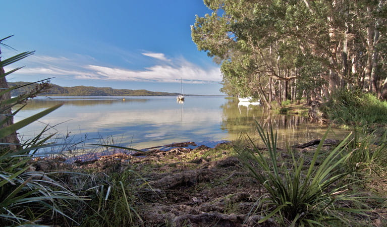 Neranie campground waters, Myall Lakes National Park. Photo: John Spencer/DPIE